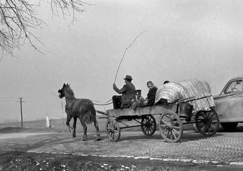 Ziemie Zachodnie (1957, wóz cygański), fot. Wojciech Plewiński
